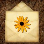 news_springcard_lrg