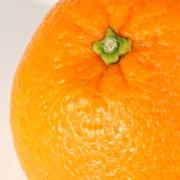 orange_lrg