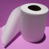 toilet-paper5sq_lrg