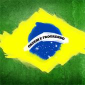 brazil_flag_170sq