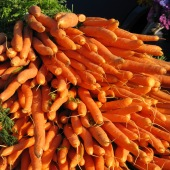 carrots-vegetables