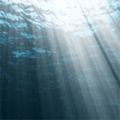 light_dark_depth_sea_170sq