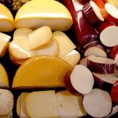 dairy-cheese_sq