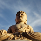 asia buddha_sq
