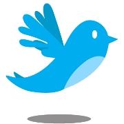 news_twitter_bird_lrg