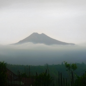 indonesia5sq_lrg