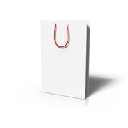 shopping bag_lrg