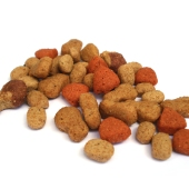 pet food5_sq