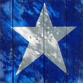 texas_star_170sq