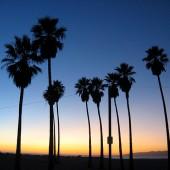 california2_sq