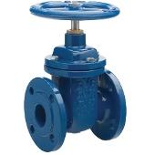 Leengate valves