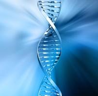 VIBT lab helix