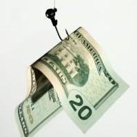 money dollar capital fishing