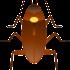 cockroach-156887_640