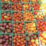 tomato-14898_640